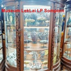 Amulet Leklai Buddha suriyan Thai Protect Rare Magic Lp Somporn StoneLuck Wealth
