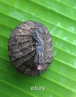 Bia Kae Thai Amulet Buddha Powerful For Money Lucky Wealth Rare Talisman Pendant