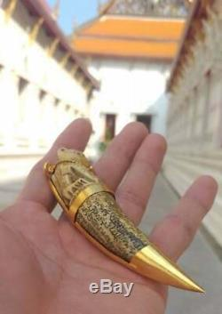 LP Pern Pig Tooth Carving Tiger Thai Buddha Amulet Life Protect Gain Wealth