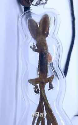 Lizard Gecko Necklace 2 Head 9 Tail Thai Buddha Amulet Rich Lucky Gambler Blesse