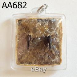 Python Snake Fang Skin LP Goy Talisman Protect Thai Buddha Amulet #aa682g