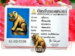 Tiger LP Parn Certificate Card Thai Amulet Buddha Charm Power Protection K812
